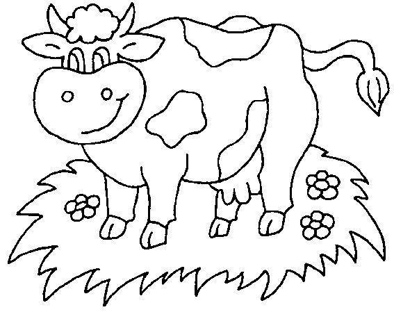 Раскраска коровы и