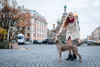http://data3.i.gallery.ru/albums/gallery/553801-47b0f-108959028-400-ub0381.jpg